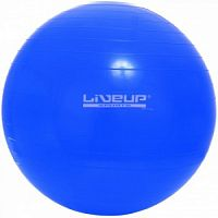 Фитбол LiveUp Gym Ball (LS3221-65b)